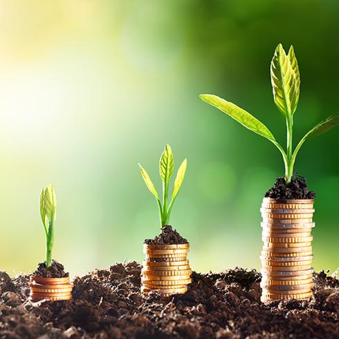 Joint Provident Fund Scheme (Employer & Employee)